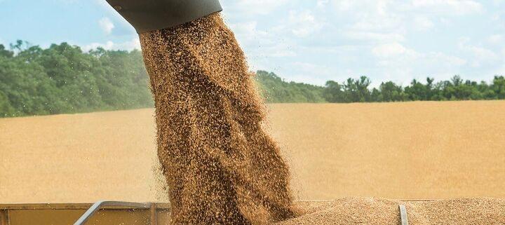۱۰ کشور برتر تولید کننده محصولات کشاورزی| ایران رتبه نخست تولید پسته و جایگاه سیزدهم منطقه در سال ۲۰۲۰